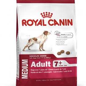 Royal Medium Adult +7